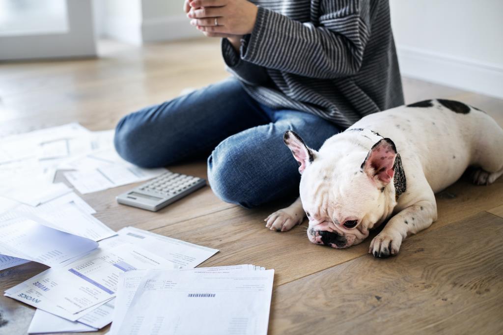 PPMW | Money worries